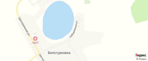 Набережная улица на карте деревни Белотурковки Омской области с номерами домов