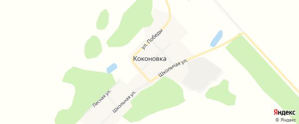 Карта деревни Коконовки в Омской области с улицами и номерами домов