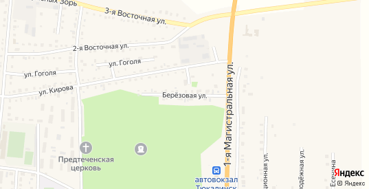 Березовая улица в Тюкалинске с номерами домов на карте. Спутник и схема онлайн