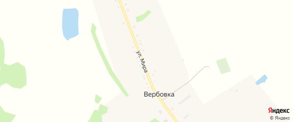 Улица Мира на карте деревни Вербовки Омской области с номерами домов