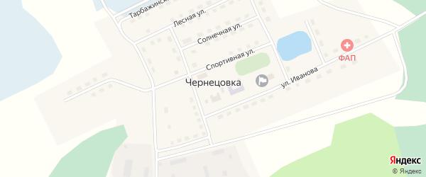 Переулок Иванова на карте села Чернецовки Омской области с номерами домов