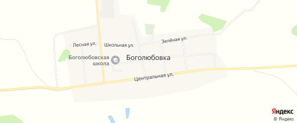 Карта села Боголюбовки в Омской области с улицами и номерами домов
