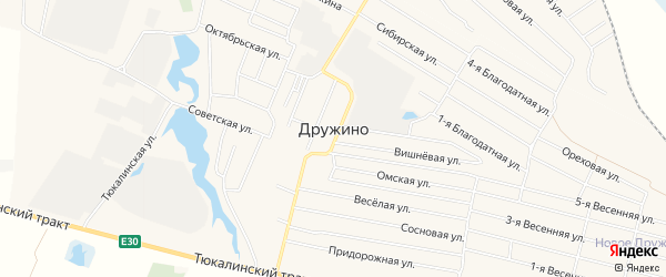 Карта села Дружино в Омской области с улицами и номерами домов