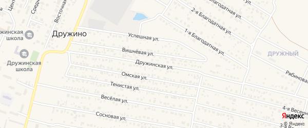Дружинская улица на карте села Дружино Омской области с номерами домов