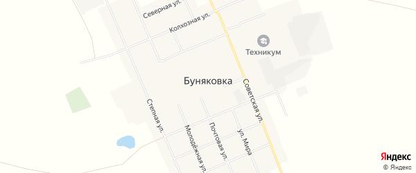 Карта села Буняковки в Омской области с улицами и номерами домов