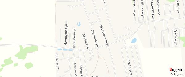 Карта села Ребровки в Омской области с улицами и номерами домов