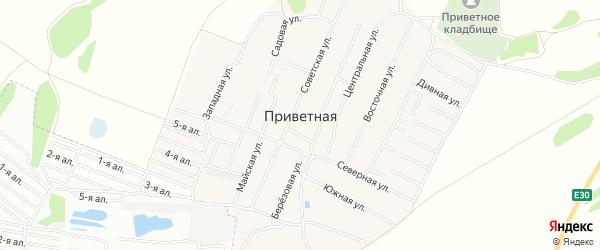Карта Приветной деревни в Омской области с улицами и номерами домов