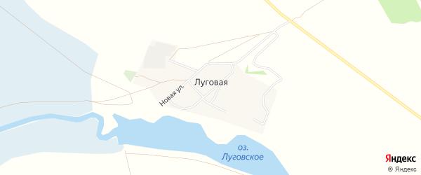 Карта Луговой деревни в Омской области с улицами и номерами домов