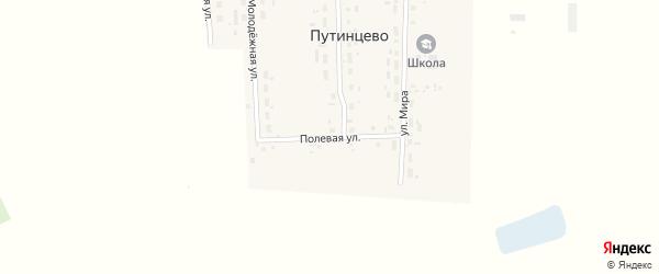 Полевая улица на карте деревни Путинцево Омской области с номерами домов