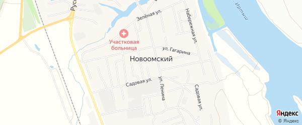Карта Новой деревни в Омской области с улицами и номерами домов