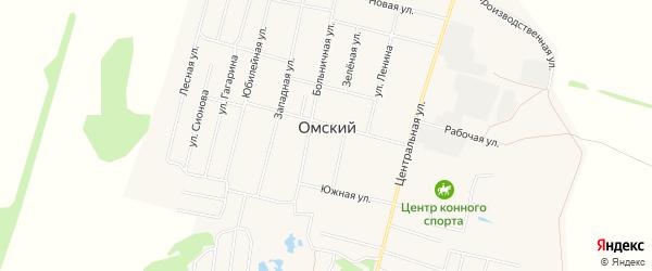 Карта Омского поселка в Омской области с улицами и номерами домов