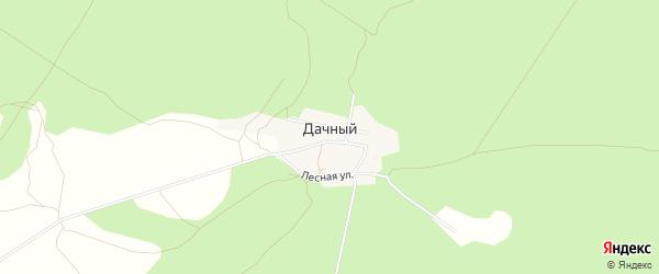 Карта Дачного поселка в Омской области с улицами и номерами домов