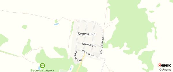 Карта деревни Березянки в Омской области с улицами и номерами домов