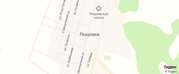 Карта села Покровки в Омской области с улицами и номерами домов