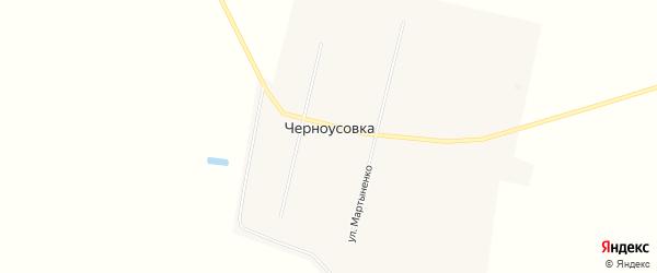 Карта деревни Черноусовки в Омской области с улицами и номерами домов