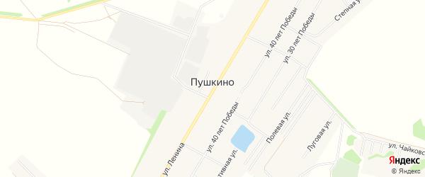 Карта села Пушкино в Омской области с улицами и номерами домов