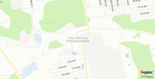 Карта поселка Птицефабрика в Омске с улицами, домами и почтовыми отделениями со спутника онлайн