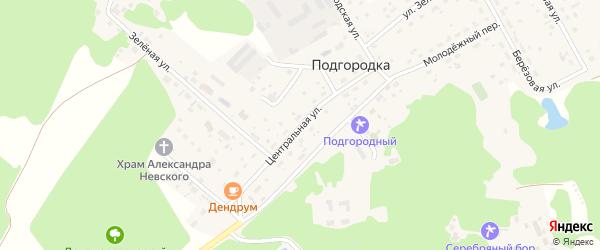 Центральная улица на карте деревни Подгородки Омской области с номерами домов
