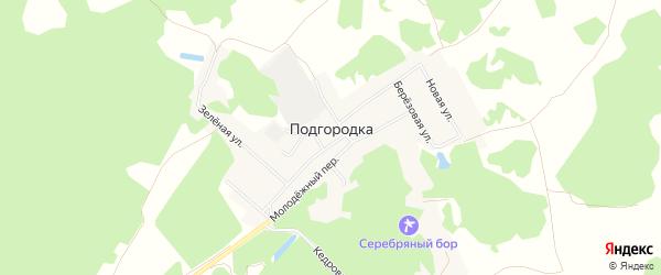 Карта деревни Подгородки в Омской области с улицами и номерами домов