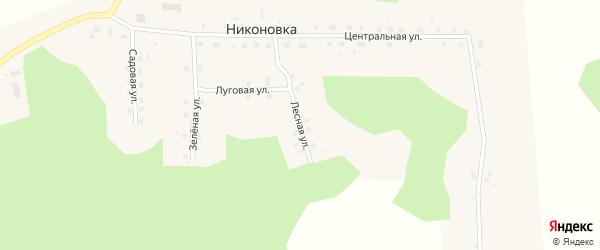 Лесная улица на карте села Никоновки Омской области с номерами домов