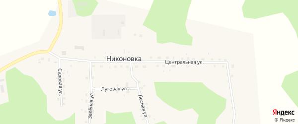 Центральная улица на карте села Никоновки Омской области с номерами домов