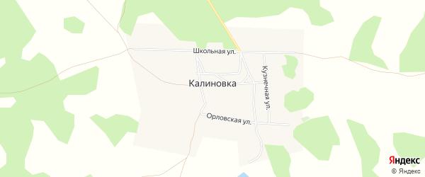 Карта деревни Калиновки в Омской области с улицами и номерами домов
