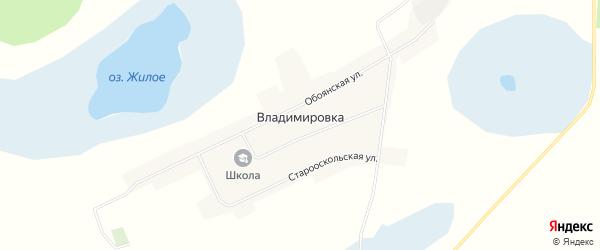 Карта деревни Владимировки в Омской области с улицами и номерами домов