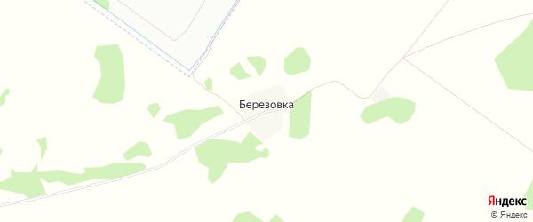 Карта деревни Березовки в Омской области с улицами и номерами домов