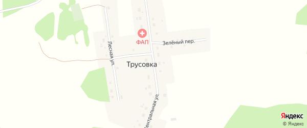 Центральная улица на карте деревни Трусовки Омской области с номерами домов