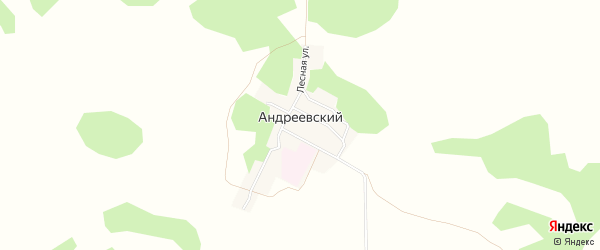 Карта Андреевского поселка в Омской области с улицами и номерами домов