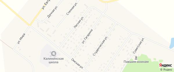 Улица Гагарина на карте села Калинино Омской области с номерами домов