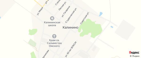 Карта села Калинино в Омской области с улицами и номерами домов