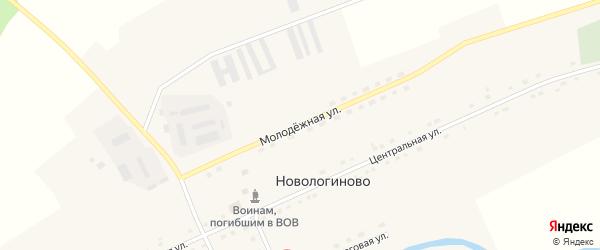 Молодежная улица на карте села Новологиново Омской области с номерами домов