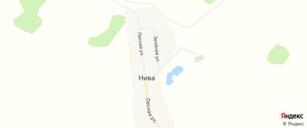Карта деревни Нивы в Омской области с улицами и номерами домов