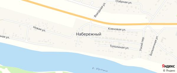 Родниковая улица на карте Набережного поселка Омской области с номерами домов