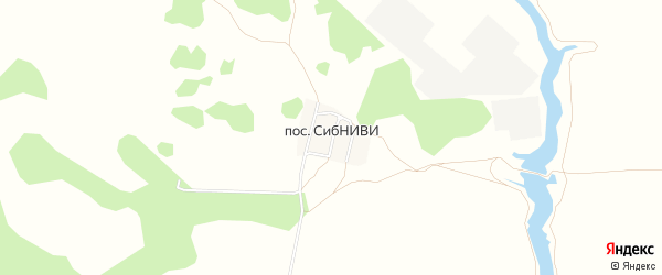 Карта поселка СибНИВИ в Омской области с улицами и номерами домов