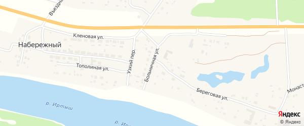 Больничная улица на карте Набережного поселка Омской области с номерами домов