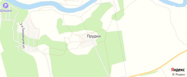 Карта деревни Прудки в Омской области с улицами и номерами домов