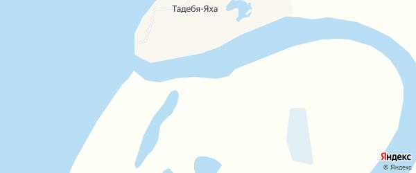 Карта деревни Тадебя-Яха в Ямало-ненецком автономном округе с улицами и номерами домов