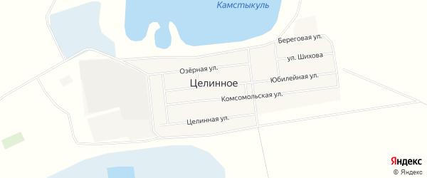 Карта Целинного села в Омской области с улицами и номерами домов