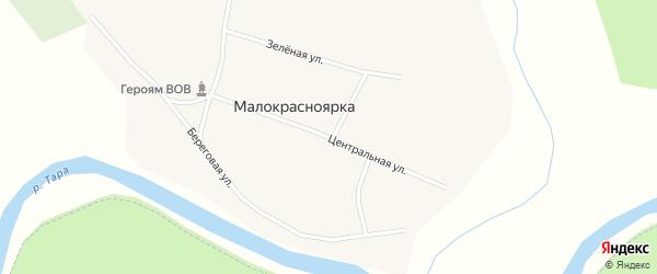 Центральная улица на карте села Малокрасноярки Новосибирской области с номерами домов