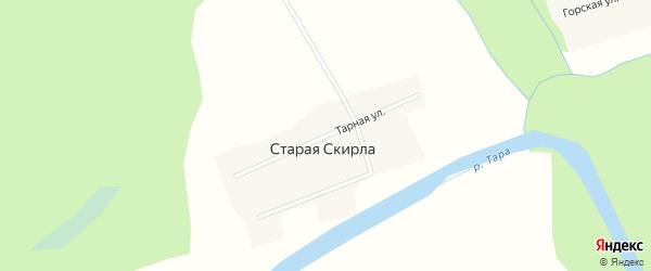 Тарная улица на карте деревни Старой Скирлы Новосибирской области с номерами домов