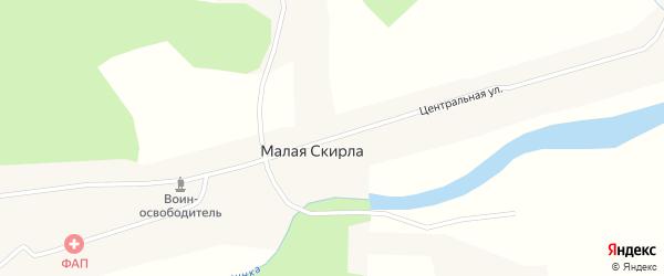 Центральная улица на карте деревни Малой Скирлы Новосибирской области с номерами домов