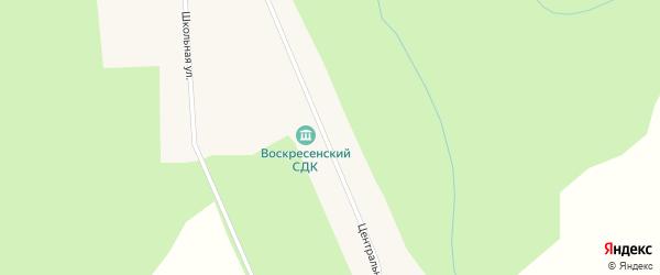 Центральная улица на карте деревни Воскресенки Новосибирской области с номерами домов