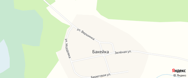 Улица Вершинка на карте деревни Бакейки Новосибирской области с номерами домов