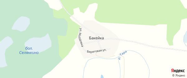 Карта деревни Бакейки в Новосибирской области с улицами и номерами домов