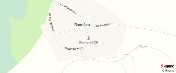 Центральная улица на карте деревни Бакейки Новосибирской области с номерами домов