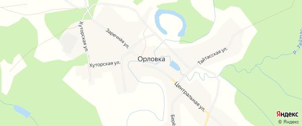 Карта деревни Орловки в Новосибирской области с улицами и номерами домов