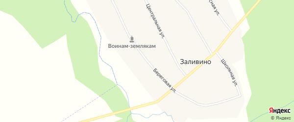 Береговая улица на карте деревни Заливино Новосибирской области с номерами домов
