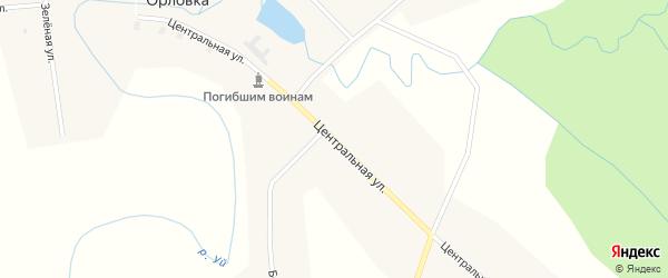 Центральная улица на карте деревни Орловки Новосибирской области с номерами домов